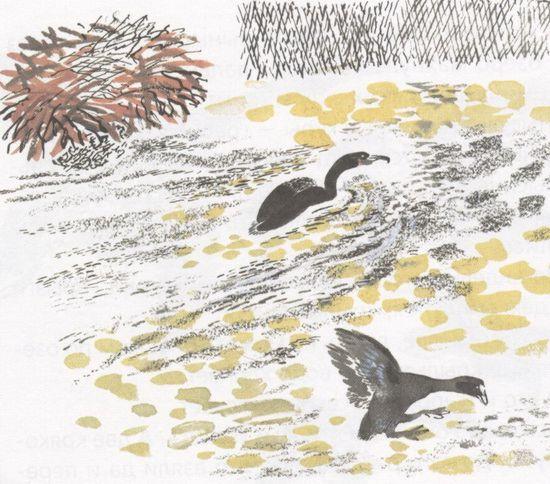 Птичье озеро.
